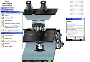 microscopio-1