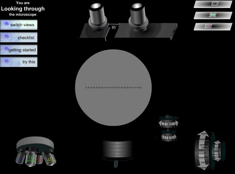 simulador de microscopio