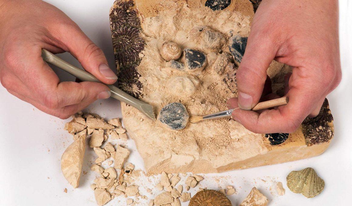 kits de excavación