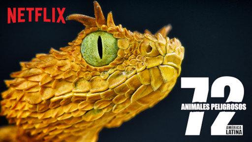 documentales de netflix 72 animales peligrosos de américa latina