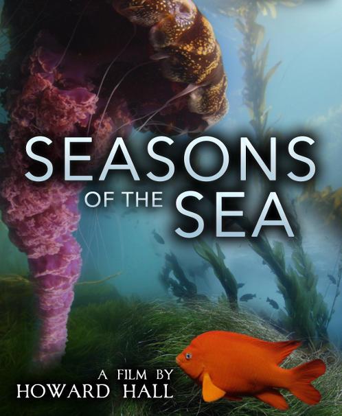 temporadas en el mar